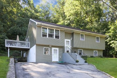 Fishkill Single Family Home For Sale: 78 Greenwood Dr