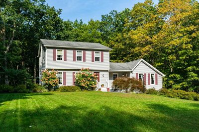 Red Hook Single Family Home For Sale: 90 Manor Road