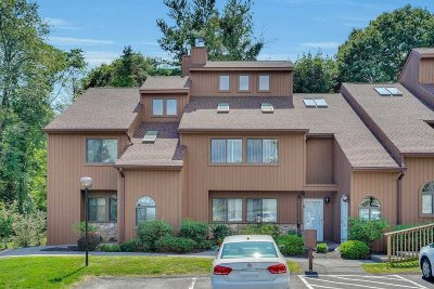 Poughkeepsie City Condo/Townhouse For Sale: 507 Scenic Ln
