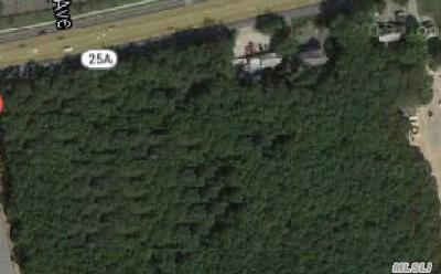 Miller Place Residential Lots & Land For Sale: Route 25a