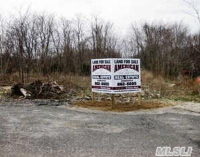 Pt.jefferson Sta Residential Lots & Land For Sale: Industrial