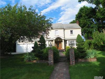 Hempstead Single Family Home For Sale: 100 Long Dr