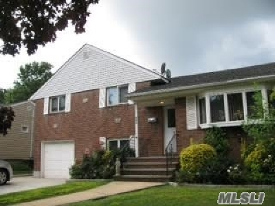 East Meadow Single Family Home For Sale: 221 Vincent Dr