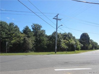 Westhampton Residential Lots & Land For Sale: 83 Montauk Hwy