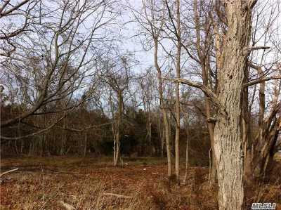 Westhampton Residential Lots & Land For Sale: 51 Tanners Neck Ln