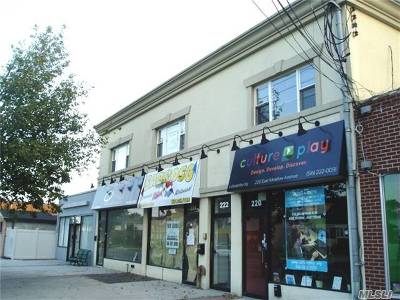 Investment For Sale: 220-226 East Meadow Ave