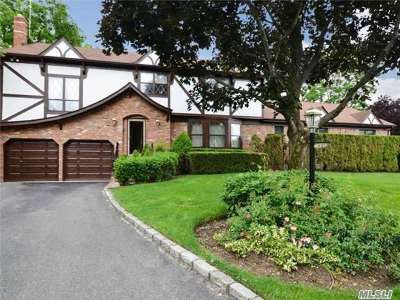 Syosset Single Family Home For Sale: 45 Pelican Ct