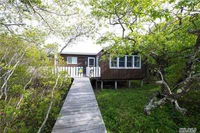 Davis Park Single Family Home For Sale: 21 Spindrift Walk