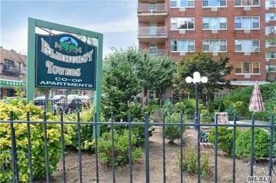 Elmhurst Co-op For Sale: 81-11 45th Avenue #3F