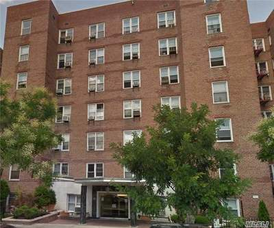 Rego Park Co-op For Sale: 102-21 63 Rd #B66