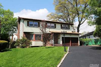 East Meadow Single Family Home For Sale: 414 Bernice Dr