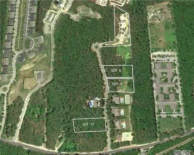 Westhampton Residential Lots & Land For Sale: 19 Sophia Ct