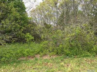 Center Moriches Residential Lots & Land For Sale: 33 Hampton Dr