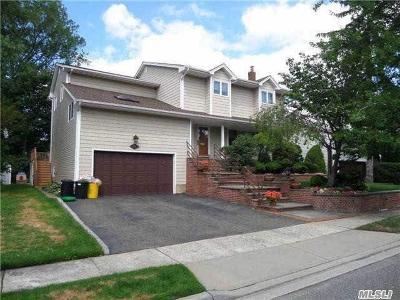 Hewlett Single Family Home For Sale: 427 Daub Ave