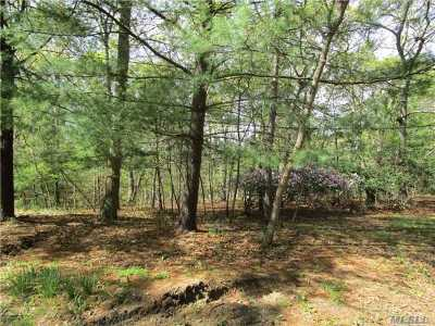 Middle Island Residential Lots & Land For Sale: 30 Lot B Middle Isl Blvd