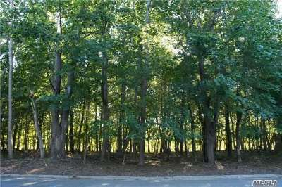 East Moriches Residential Lots & Land For Sale: 20 Inlet View Path