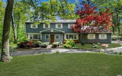 Syosset Single Family Home For Sale: 567 Split Rock Rd