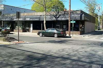 Great Neck Commercial For Sale: 582 Middle Neck Rd