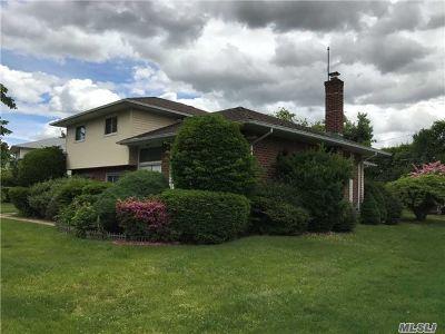 Jericho Single Family Home For Sale: 344 White Birch Ln