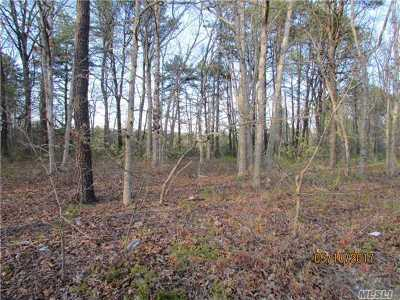 Manorville Residential Lots & Land For Sale: Land Yaphank Moriches Ave