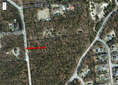 Manorville Residential Lots & Land For Sale: 274 Silas Carter Rd