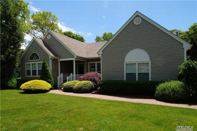 Westhampton Single Family Home For Sale: 9 Willowood Ct