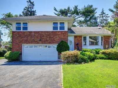 Hicksville Single Family Home For Sale: 7 Ingram Dr