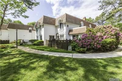 Medford Condo/Townhouse For Sale: 593 Blue Ridge Dr