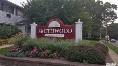 Smithtown Rental For Rent: 211 Terry Rd #17B