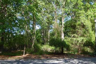 East Moriches Residential Lots & Land For Sale: Lot #12 Briana Ct