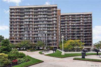 Flushing Condo/Townhouse For Sale: 150-38 Union Tpke