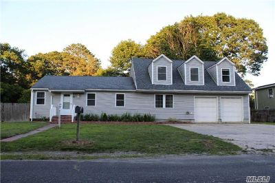 Centereach Single Family Home For Sale: 95 Craft Rd