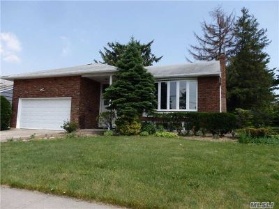 Valley Stream Single Family Home For Sale: 966 Park Ln