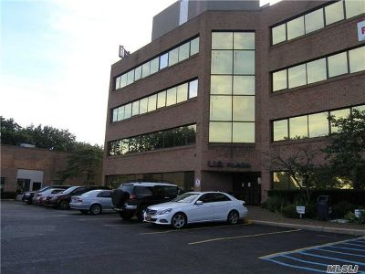 Commercial Lease For Lease: 2545 Hempstead Tpke