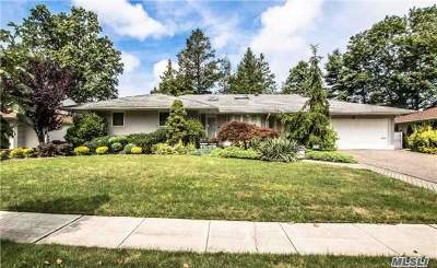 Jericho Single Family Home For Sale: 21 Hightop Ln