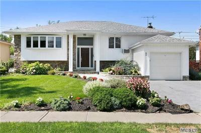 Valley Stream Single Family Home For Sale: 865 Flanders Dr