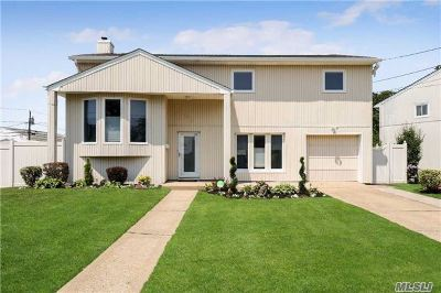 Baldwin Single Family Home For Sale: 3484 Carey Ln