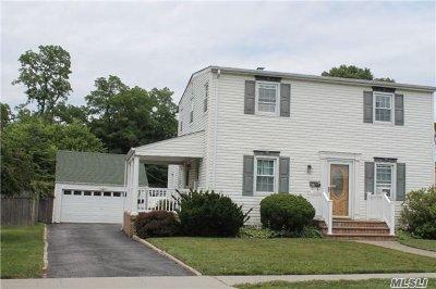 Farmingdale Single Family Home For Sale: 44 Walnut Ave E