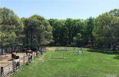 Residential Lots & Land For Sale: 87-B Hunter Ave