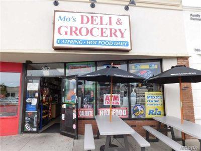 Island Park, Long Beach, Lynbrook, Oceanside, Rockville Centre Business Opportunity For Sale: 267 W Park Ave