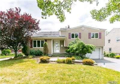 Hicksville Single Family Home For Sale: 27 Glenbrook Rd