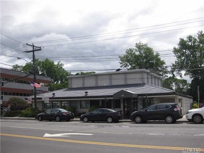 Great Neck Commercial For Sale: 14 Northern Blvd