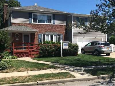 Lynbrook Multi Family Home For Sale: 38 Spencer Ave