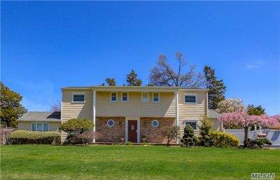 Massapequa Park Single Family Home For Sale: 71 Larch Ln