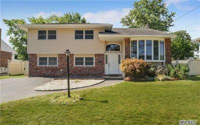 Massapequa Park Single Family Home For Sale: 311 Violet St