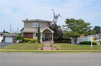 Levittown Single Family Home For Sale: 346 Taylor Ave