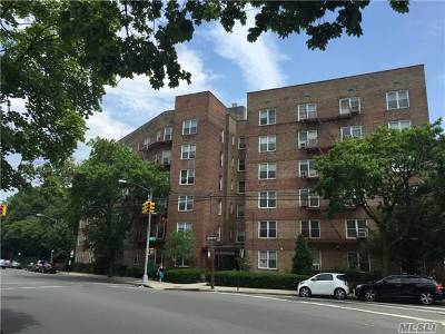 Rego Park Co-op For Sale: 74-45 Yellowstone Blvd #6G