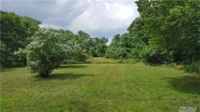 Holtsville Residential Lots & Land For Sale: Lot A Park St