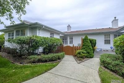 Coram Condo/Townhouse For Sale: 3 Theodore Dr