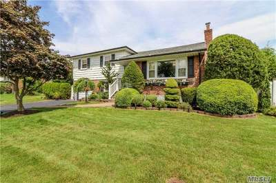 Hicksville Single Family Home For Sale: 115 Vincent Rd